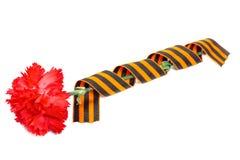 Cravos vermelhos com a fita do ` s de St George isolada no fundo branco 9 de maio dia da vitória na grande guerra patriótica de 1 Fotos de Stock