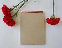 Cravos vermelhos em um fundo branco fotos de stock royalty free