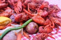 Crawdads cozinhados empilhados na toalha de mesa verificada com batatas e aspargo e limões - foco seletivo com o vapor que vem fo imagem de stock royalty free