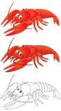 crawfish Royaltyfri Bild