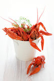 Crawfish Stock Images