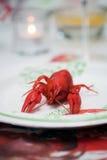 Crawfish Stock Image