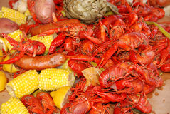 Crawfish. Getting Crayfish ready to boil at a cookout with selective DOF royalty free stock photos