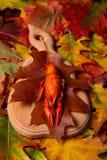 Crawfish Royalty Free Stock Photography