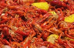 Crawfish and Corn Spreadout Stock Photos