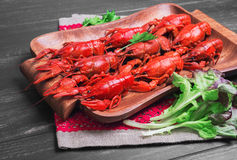 Crawfish food photo Royalty Free Stock Image