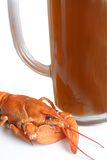 Crawfish and mug of beer. On the white background Royalty Free Stock Image