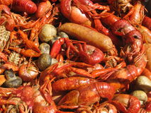 Crawfish, Mushrooms and Suasage Royalty Free Stock Image
