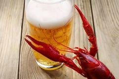 Crawfish och ett exponeringsglas av öl Arkivbild