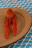 Crawfish on Plate Vertical. Large boiled crawfish on a brown plate shot vertical Royalty Free Stock Photos