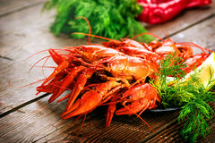 Crawfish. Red boiled crayfish on a wooden table Royalty Free Stock Images