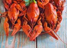 Crawfish on wooden background Royalty Free Stock Images