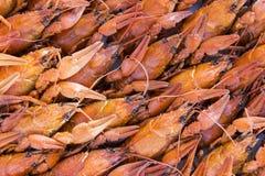 crawfishes много стоковая фотография