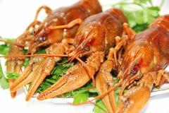 crawfishes Groupe  库存图片