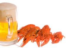 Crawfishes and mug of beer Royalty Free Stock Photo