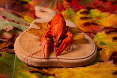 Crawfishon die hölzerne Platte Stockfotos