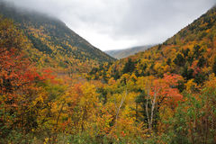 Crawford Notch State Park Stock Photos