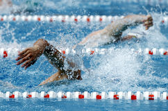 Crawl swimmer. Male swimmer swimming crawl in a competition swim pool Stock Images