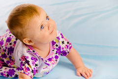 Crawling across the blue plaid baby looking up Royalty Free Stock Photos