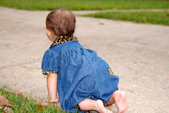 Free Crawling Away Stock Photos - 1307393