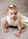 Crawling Baby Stock Photo