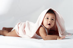 Crawling baby. A baby lying on his belly, in a crawling position, looks up from under a blanket Royalty Free Stock Images