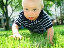 Crawling Baby Boy. Boy crawling in the grass Stock Photography