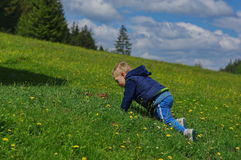 Crawling baby boy. Little baby boy crawling on the green grass in the forest royalty free stock image