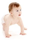 Crawling baby boy looking up. Bright picture of crawling baby boy in diaper stock images