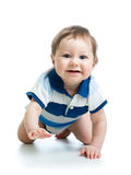 Crawling baby boy. On white background stock photography
