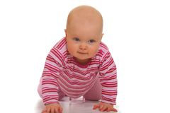 Crawling baby girl Stock Photography