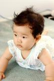 Crawling Baby Stock Photos