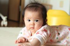 Crawling baby girl. (Japanese baby Royalty Free Stock Photo