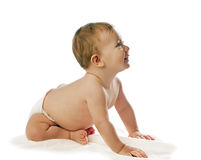 Crawling baby girl. On white royalty free stock photography
