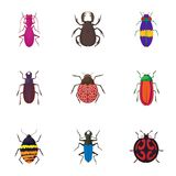 Crawling beetles icons set, cartoon style. Crawling beetles icons set. Cartoon illustration of 9 crawling beetles vector icons for web Royalty Free Stock Photo