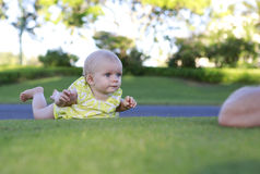 Crawling blue eyes baby girl Stock Photography