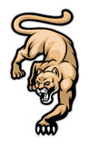 Crawling cougar. Vector of crawling cougar in sport mascot style Royalty Free Stock Image