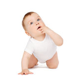 Crawling curious baby looking up. Child and toddler concept - crawling curious baby looking up stock image