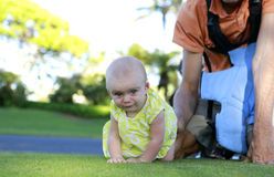 Crawling cutel baby girl Stock Images