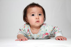 Crawling Japanese baby girl Stock Photography
