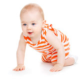 Crawling kid. A sweet kid crawling, isolated stock image