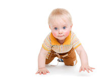Crawling kid. A sweet kid crawling, isolated stock photography