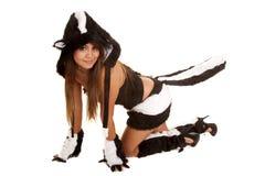 Crawling skunk costume Stock Photo