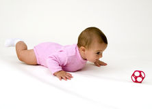 Crawling After Toy Stock Photo