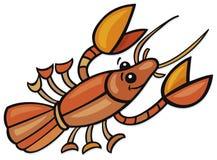 Crayfish Stock Photography