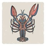 Crayfish2 Стоковые Фотографии RF