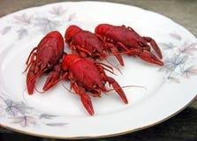crayfish Стоковые Фото
