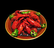 crayfish Zdjęcia Stock