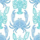 Crayfish4 Στοκ Εικόνες