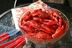 crayfish Стоковое фото RF